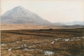 View over an expansive area of bog towards mount Errigal