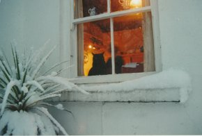 Hamilton Sloans cat looking out the cottage window at the snow during winter county Donegal